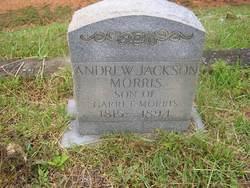Andrew Jackson Morris