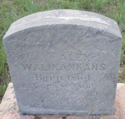 Alex Walikankans