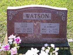 R. Robert Watson