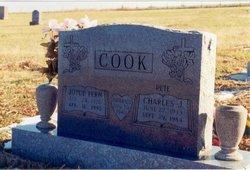 Joyce Fern <I>Henn</I> Cook