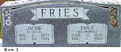 "Johann Jacob ""Jacob"" Fries"