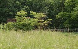 Oak Level Cemetery