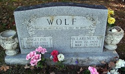 Angeline Angie <I>(Brown)</I> Wolf
