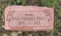 Rose <I>Thomas</I> Evans