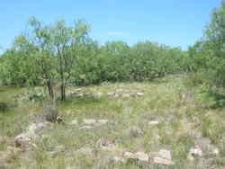Caldwell Ranch Graves