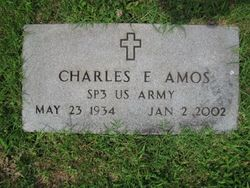 Charles E Amos