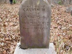 Calvin Hamilton Acton