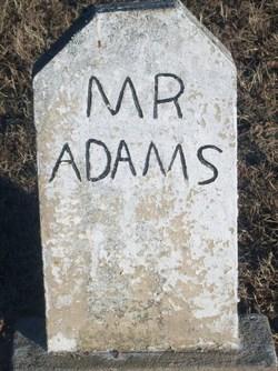 Male Adams