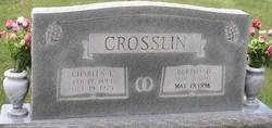 Bertha Leola <I>Duncan</I> Crosslin
