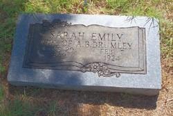Sarah Emily <I>Helms</I> Brumley