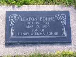 Leafon Bohne