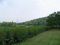 Mundell Cemetery