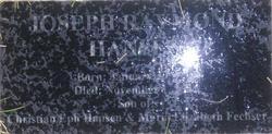 Joseph Raman Hansen