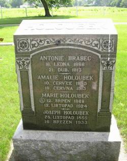 Antonie <I>Holoubek</I> Brabec