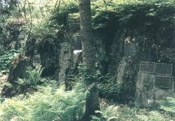 Adams-Pfaelzer Cemetery