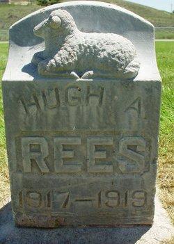 Hugh Alanby Rees