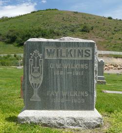 Oscar W. Wilkins