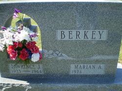 Lawrence J Berkey