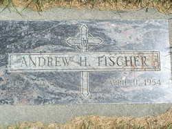 Andrew H Fischer