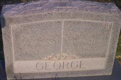 James Allen George