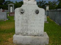 George Abood, Sr
