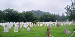 Bingham Village Cemetery