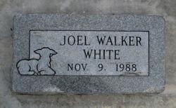 Joel Walker White