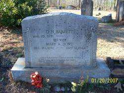 Mary Ann <I>Dowd</I> Barrett