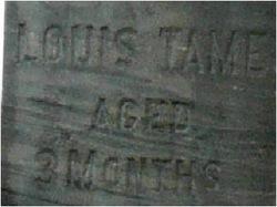Louis Tame