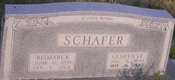 Genevieve Louise <I>Carter</I> Schafer