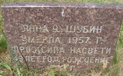 Anna J Shubin