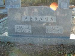 Lee Arthur Abrams
