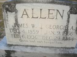 Georgia Ann <I>Sapp</I> Allen