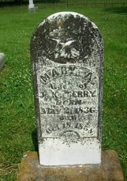 Mary Anne <I>Webb</I> Terry