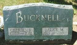Alice M <I>Schultz</I> Bucknell