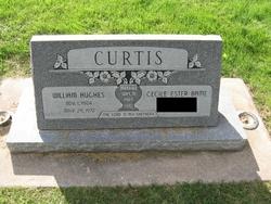 William Hughes Curtis