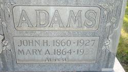Mary Ann <I>Lish</I> Adams