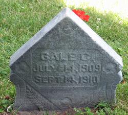 Gale C Langworthy