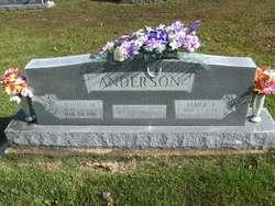 Elmer J Anderson