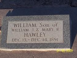 William Hawley
