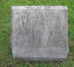Sylvia Chastena <I>Felt</I> Benscoter