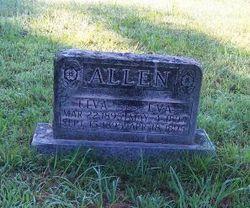 Elva Allen