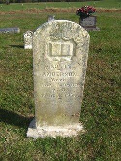 Garland Anderson