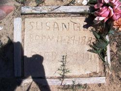 Susan Boren Guy