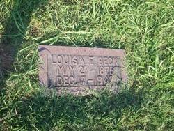 Louisa Ella <I>Williams</I> Beck