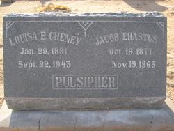 Jacob Erastus Pulsipher