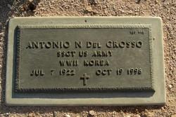 Antonio N Del Grosso