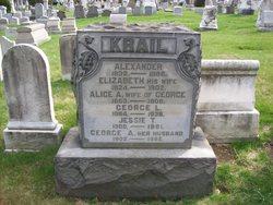 Alexander Krail
