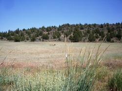 John Pearce Burial Site