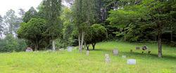 Lee-Cox Cemetery